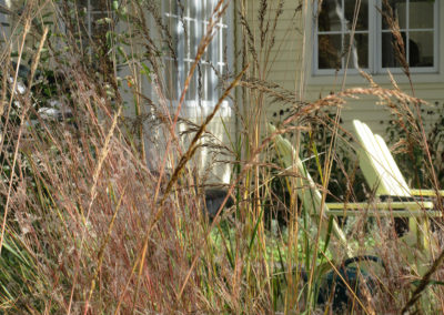 Native grasses and outdoor seating area