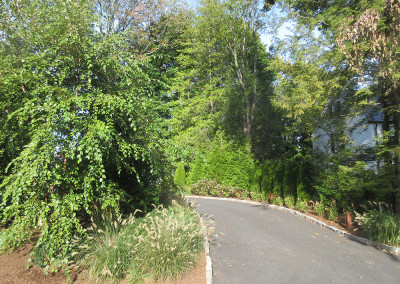 Scarsdale Addition - 6