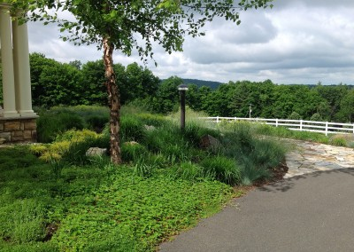 Lush perennials overlooking the Hudson Valley